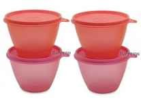 Tupperware bowled over Plastic Bowl Set of 4 Rs. 349 @ Flipkart